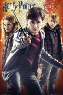 Plakát Harry Potter FP2578